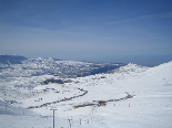 Cedars Slopes