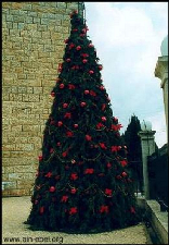 The Christmas Tree at the Church Square - Ain - Ebel