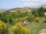 Hiking Trip To jezzine